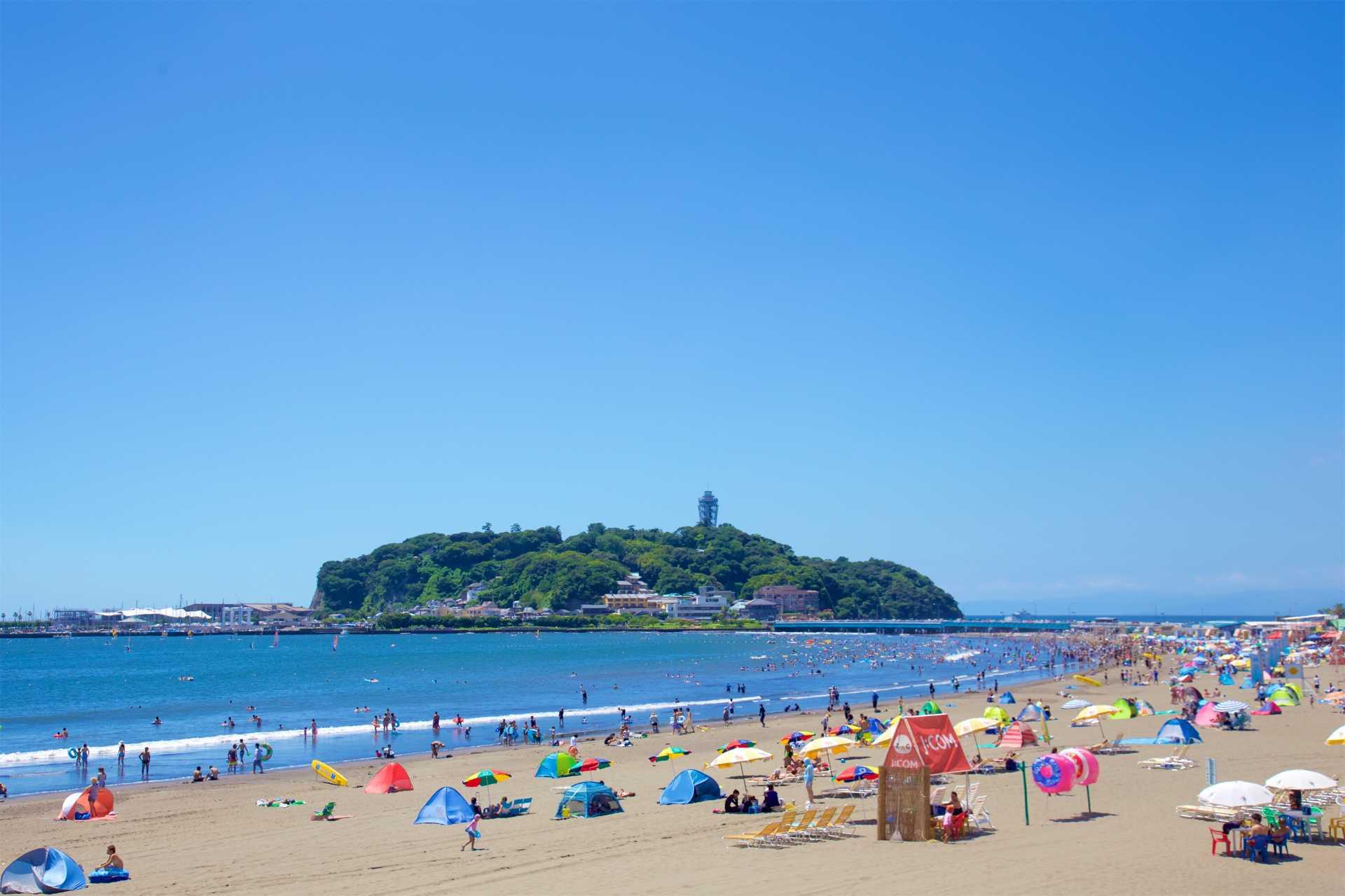 藤沢市海水浴場特設サイト