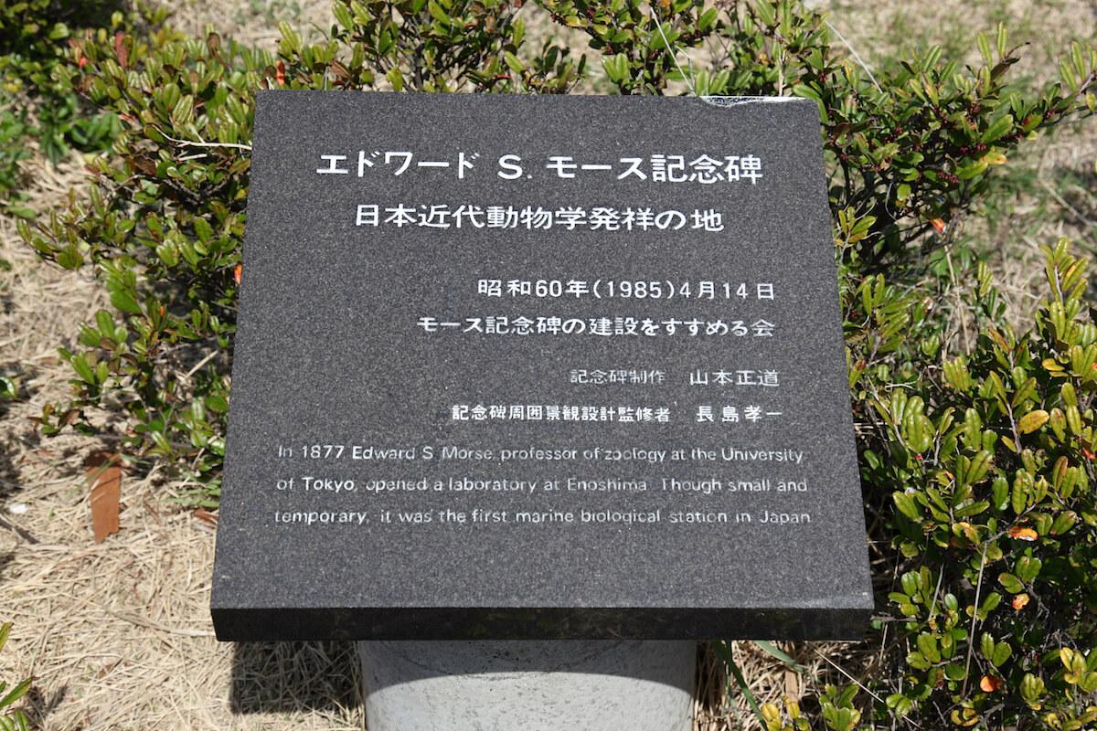 モース記念碑