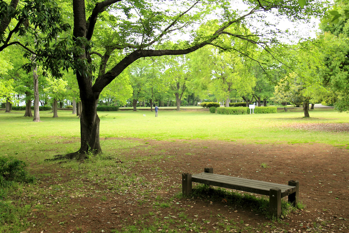大庭城址公園